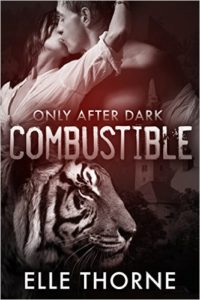 Book Cover: Combustible