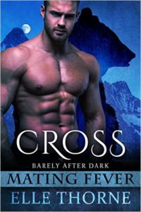 Book Cover: Cross