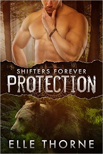 Book Cover: Protection