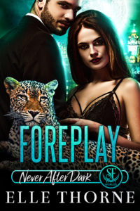 Book Cover: Foreplay