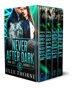 Book Cover: Never After Dark Box Set: Books 1-4