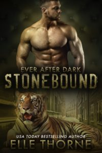 Book Cover: Stonebound