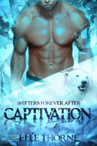 Book Cover: Captivation