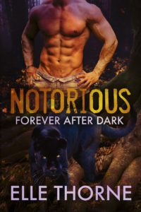 Book Cover: Notorious