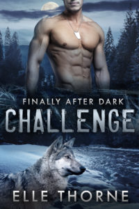 Book Cover: Challenge