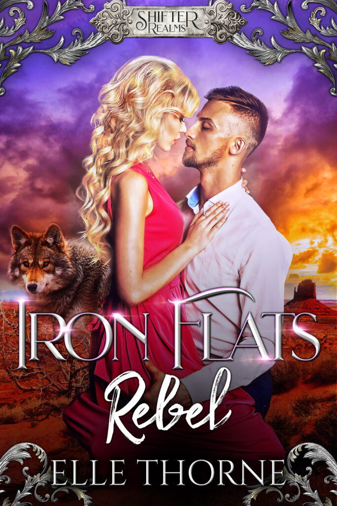 Book Cover: Iron Flats Rebel