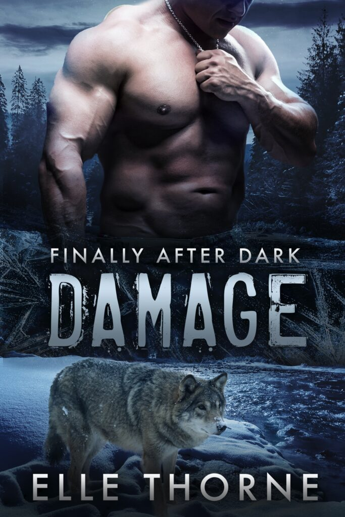 Book Cover: Damage